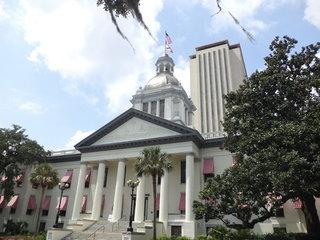 Florida debt drops again after rising last year