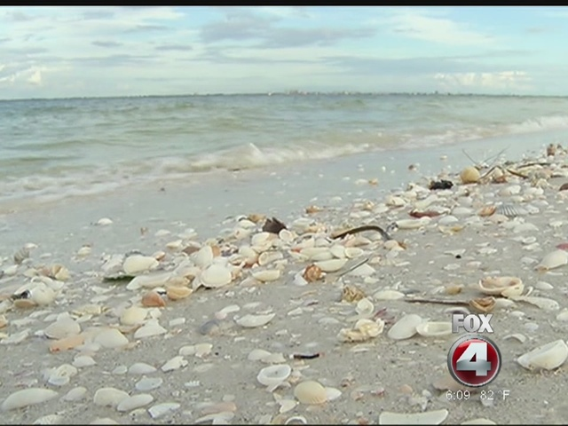 FWC: High concentrations of red tide found