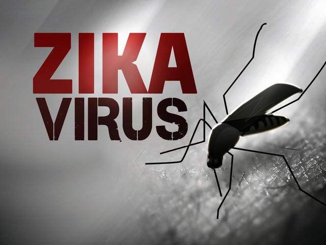Florida opens Zika hotline to field questions