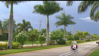 Sidewalk project means trees coming down in Cape