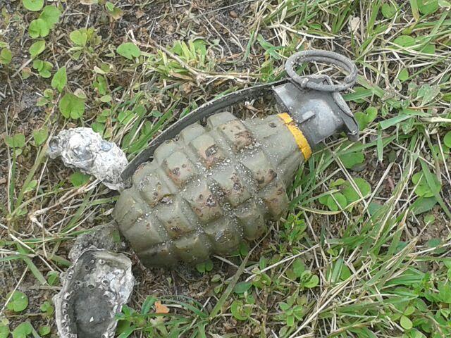 Bomb team investigates grenade found on beach