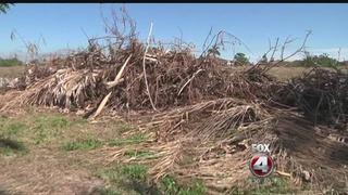 Debris still sitting weeks after severe storm