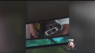 School bus driver watches videos while driving