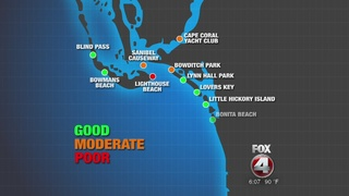 Bacteria detected along Lee County beaches