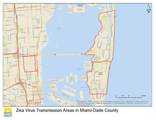 Miami's Wynwood area no longer active Zika zone