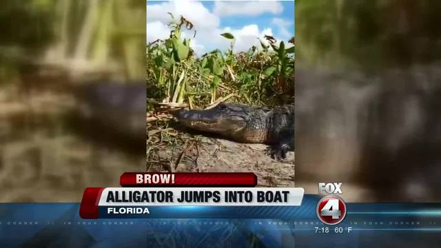 Facebook Live captures alligator jumping into boat in Florida