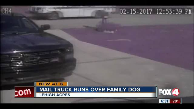Post Office Mail Truck Runs Over Family Dog