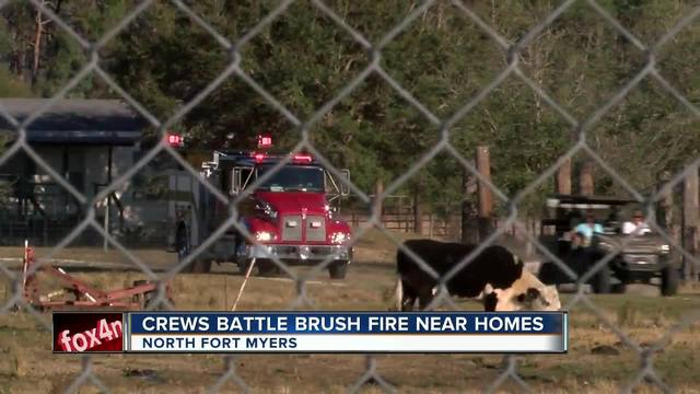 Crews battling brush fire close to homes in North Fort Myers