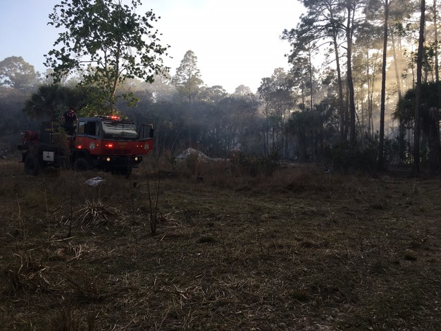 Brush fire ruled as arson in North Fort Myers