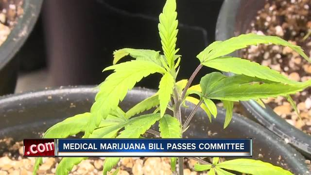 Amendment 2 implementing bill passes House committee