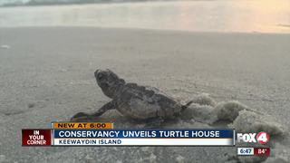 New sea turtle research facility opens
