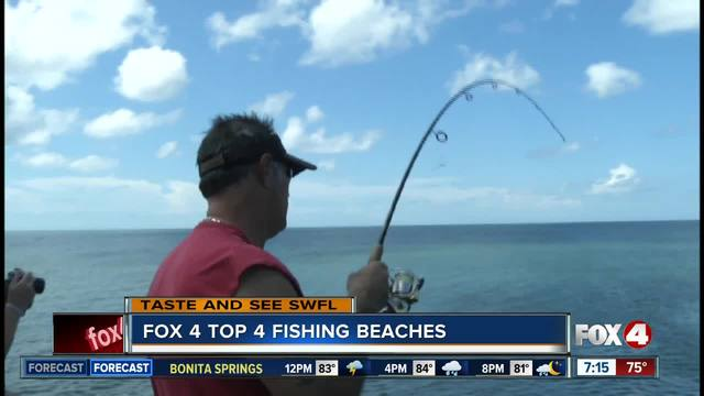 Best beaches for shore fishing in Southwest Florida - YouTube