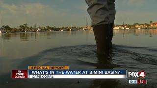 Bad behavior and bad water in Bimini Basin