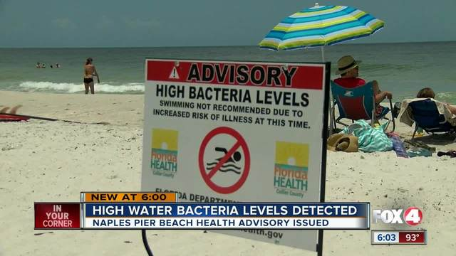 High bacteria levels detected in waters around Naples Pier