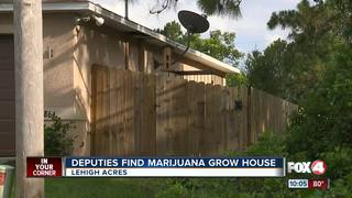 Loud sound exposes marijuana grow house