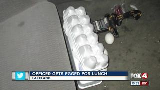 Teens charged with throwing egg at police