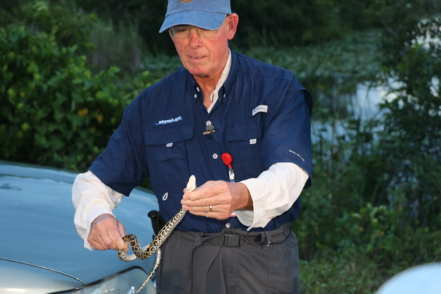 Rooney hunts Burmese pythons in Everglades