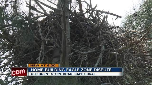 Home building eagle zone dispute