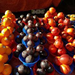 Bonita Springs Farmer's Markets for the Season