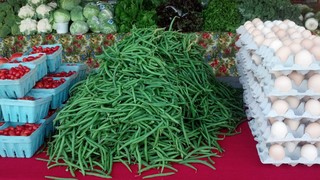 Cape Coral Farmer's Markets for the Season