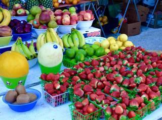 Sanibel Island Farmer's Market for the Season