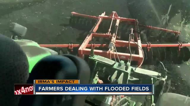 Farmers deal with flooded fields