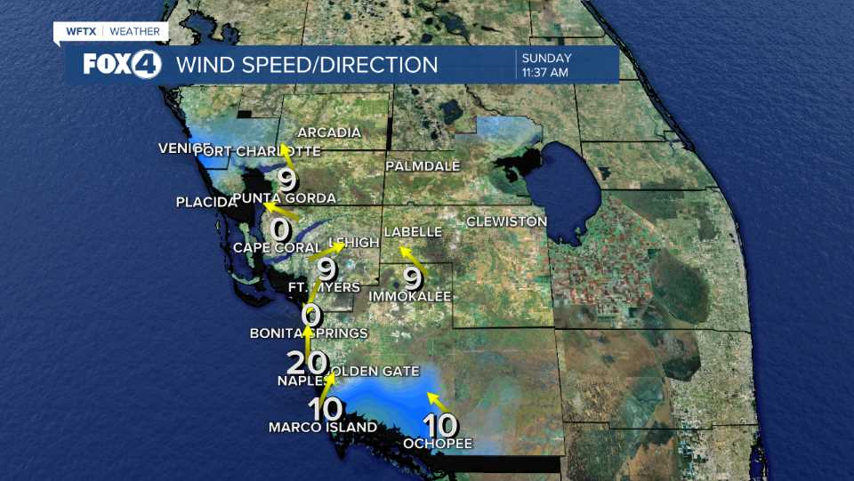 Current Winds in SW Florida
