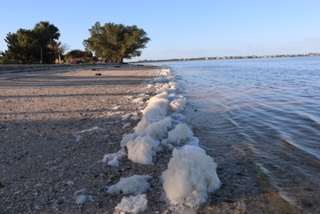 Photos: Sea foam accumulating on Sanibel