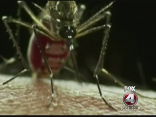 New Lee County Zika case confirmed