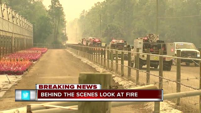 Behind the scenes of the Collier County wildfire