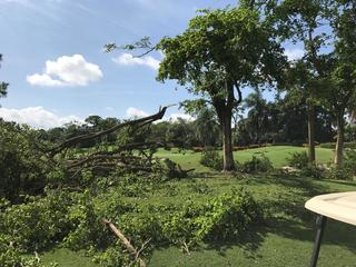 Storm damage closes golf courses in Ft. Myers