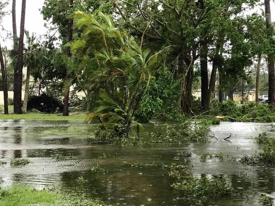 Photos Storm Damage In Southwest Florida From Hurricane