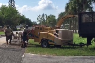 Bonita Springs debris pickup to resume in Nov.