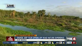 Orange Jeep Tours offers post Irma promotion