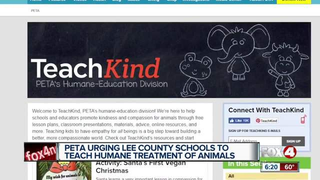 Video of cat abuse prompts PETA to ask schools to teach compassion