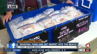 Farm and art market opens on Fort Myers Beach