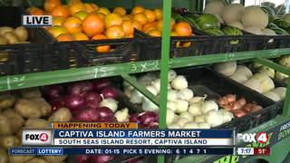 Captiva Island Farmers Market opens Tuesday