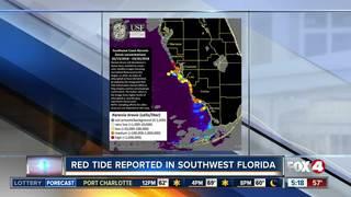 Red tide still threatens SWFL coast