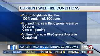 Wildfires in Southwest Florida