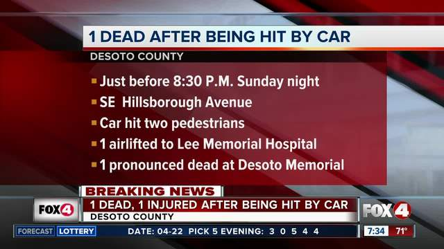 Troopers- Pedestrian killed by car