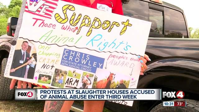 Animal activists say their not backing down