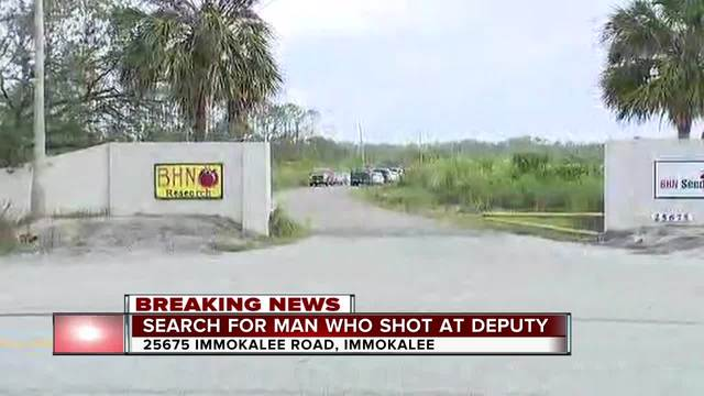 Gunman in custody after deputy shot at overnight in Collier County