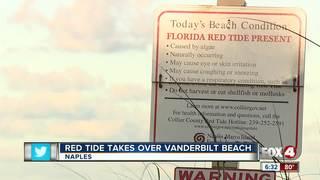 Red Tide reported on Vanderbilt Beach