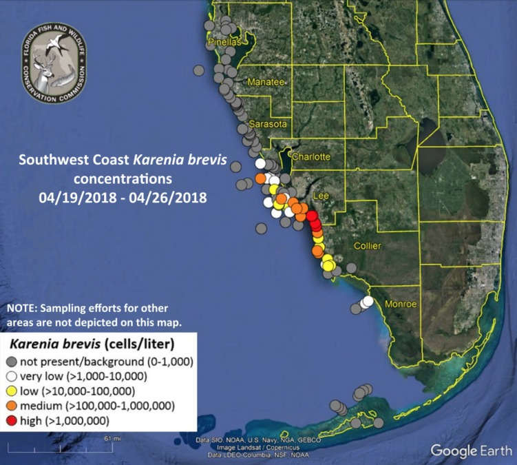 Red Tide Issues Continue Across Southwest Florida Fox 4 Now Wftx