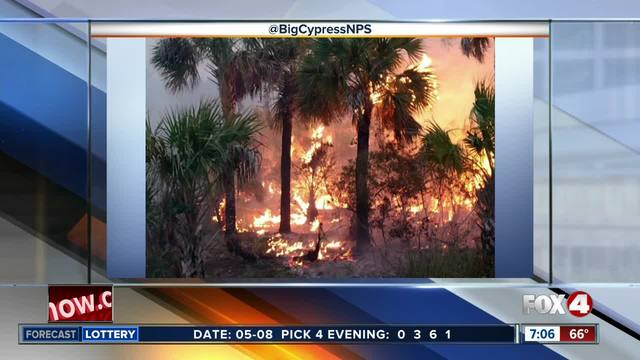 Wildfire Watch- A look at brush fires across Southwest Florida