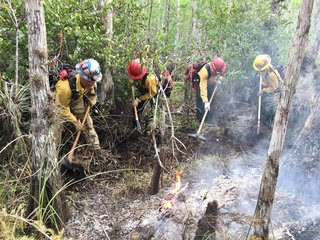 Avian Complex Fire now 35 percent contained