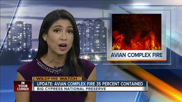 Avian Complex Fire 35 Percent Contained