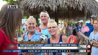 Participants attempt largest human shell image