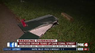 Reckless driver damages trees and mailboxes
