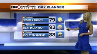 FORECAST: Hot and Humid with Isolated Storms